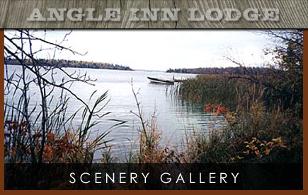 Angle Inn Lodge Scenery Gallery